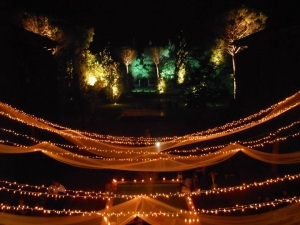 wedding arrangements with lights