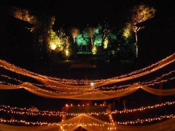 wedding arrangements with lights