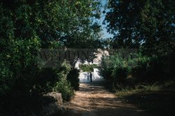 outdoor-wedding-in-puglia-22
