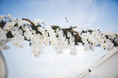 Puglia Beach Wedding (16)